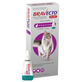Bravecto Plus Purple Spot-On Cat 6.25kg - 12.5kg (1 tube)